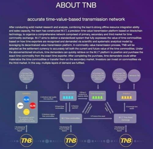 принцип работы платформы Time New Bank