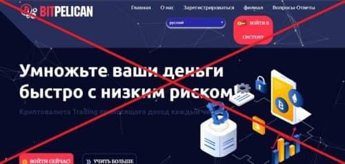 BitPelican